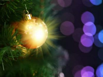 Christmas Party Cruises with Thames Cruises